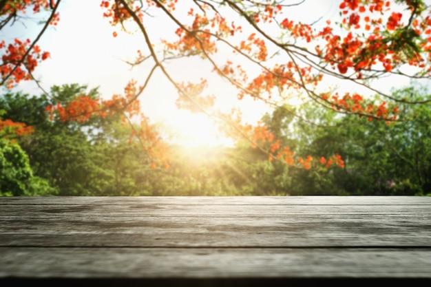 Bois vide avec une fleur rouge sur fond de nature