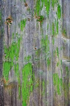 Bois vieilli gris peint en vert