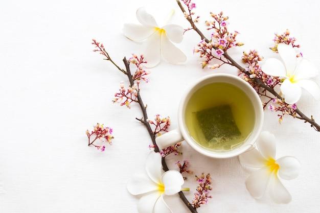 Boissons santé à base de plantes thé vert chaud