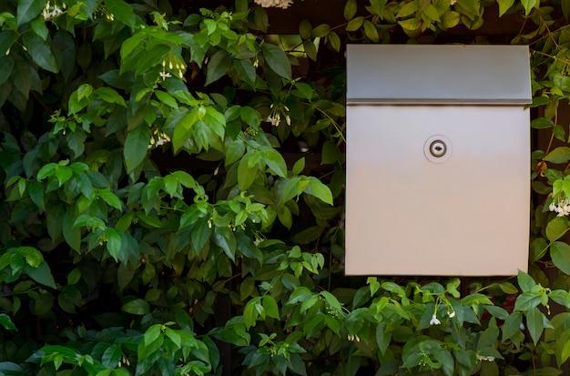 Boîte aux lettres moderne placée à côté de feuilles vert vif