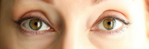 Boîte aux lettres vue de jolis yeux étonnants de couleur vert orange femelle
