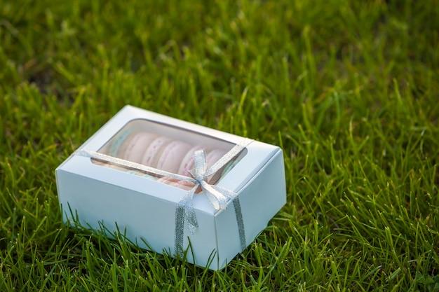 Boîte cadeau en carton blanc avec des biscuits macaron à la main sur la pelouse d'herbe verte.