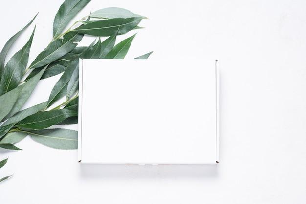 Boîte en carton blanc avec brosse d'arbre