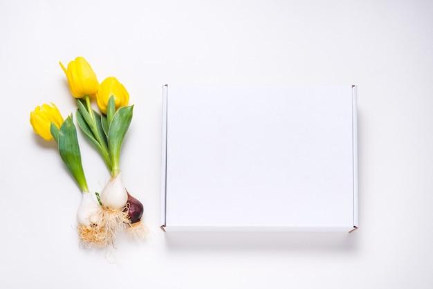 Boîte en carton blanc décorée de tulipes jaunes fraîches