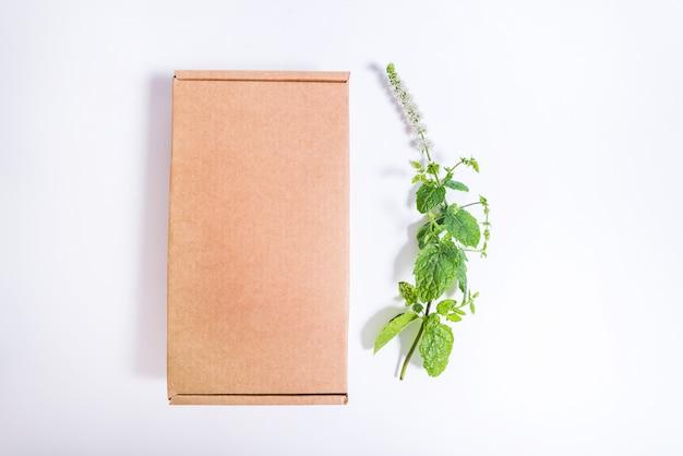 Boîte en carton brun et branche de menthe poivrée fraîche