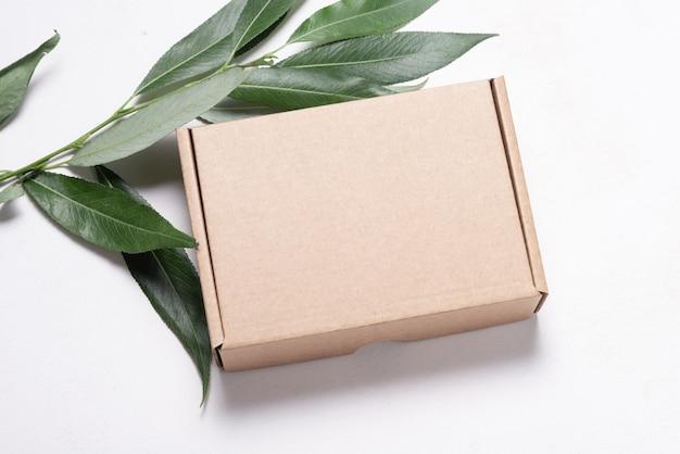 Boîte en carton en carton brun ob feuilles vertes fraîches
