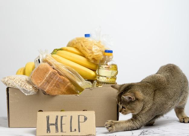 Boîte en carton avec divers produits, fruits, pâtes, huile de tournesol dans une bouteille en plastique et conservation. concept de don