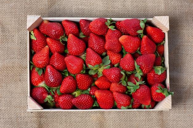 Boîte de fraises de saison fraîchement cueillies