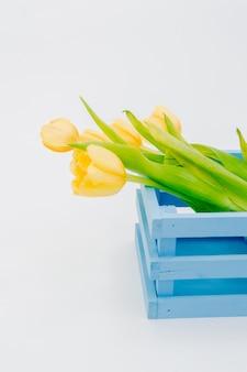 Boîte de panier en bois bleu tulipes isolé sur fond blanc.