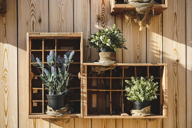 Boîtes en bois avec lavande, sauge et autres plantes aromatiques