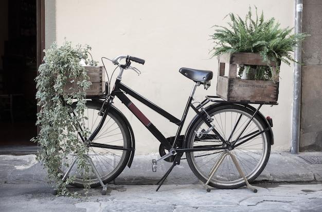 Boîtes avec plante sur vélo