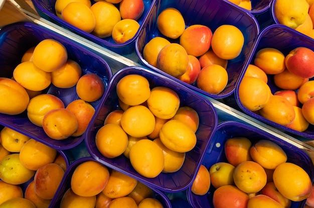 Boîtes de prunes fraîches lumineuses