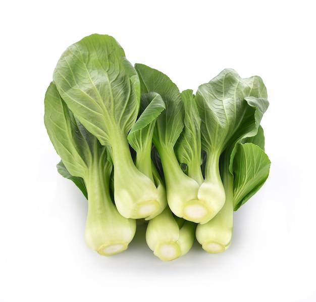 Bok choy légume sur fond blanc