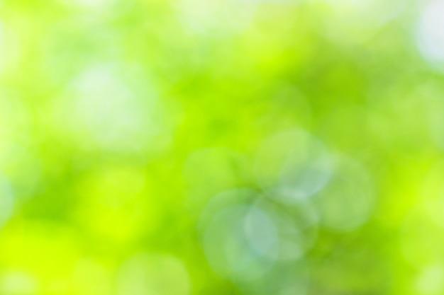 Boke jaune-vert d'été naturel comme arrière-plan
