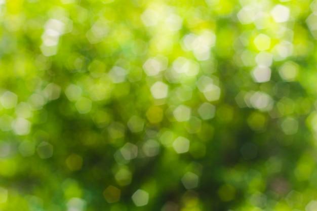 Bokeh abstrait vert, fond vert