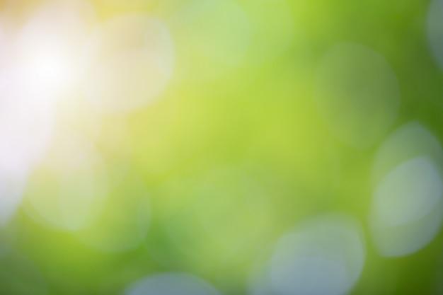 Bokeh vert sur la nature flou fond. élément de design.