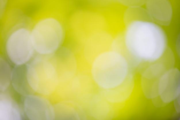 Bokeh vert sur la nature floue. élément de design.