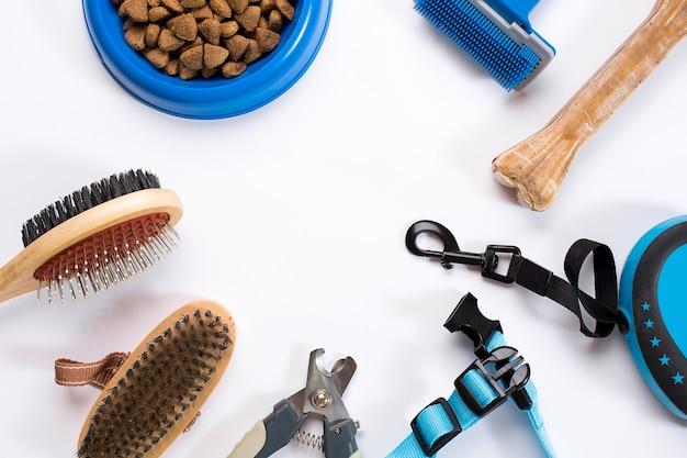 Bol de collier avec des peignes et des brosses de délicatesse de laisse d'alimentation pour des chiens d'isolement sur le fond blanc