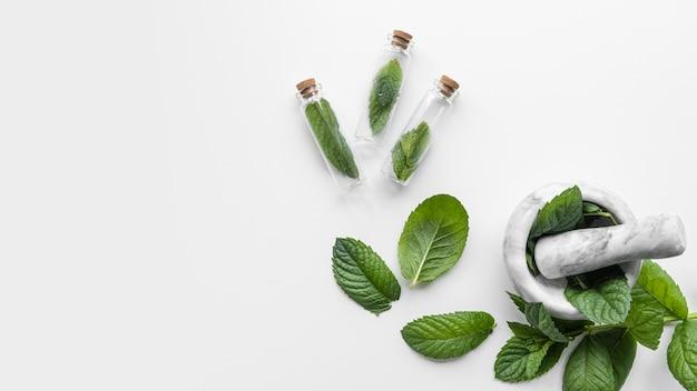 Bol de copie-espace avec des feuilles