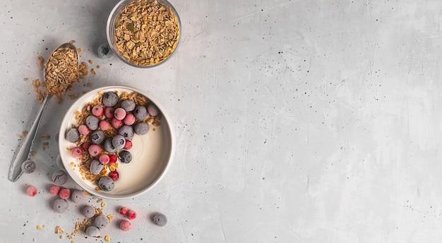 Bol de yaourt fait maison avec granola et baies congelées recouvert de givre sur fond gris, mise à plat