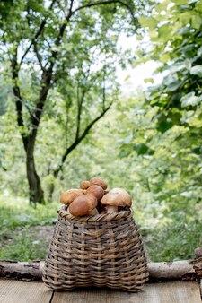 Bolet de champignons sur fond de bois. champignons d'automne. cèpes boletus edulis sur fond de bois