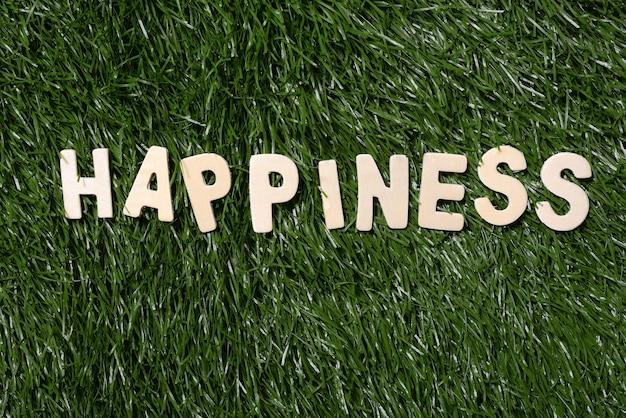 Bonheur panneau en bois sur herbe