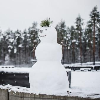Bonhomme de neige. faire un bonhomme de neige. la première neige d'europe. faire un bonhomme de neige.