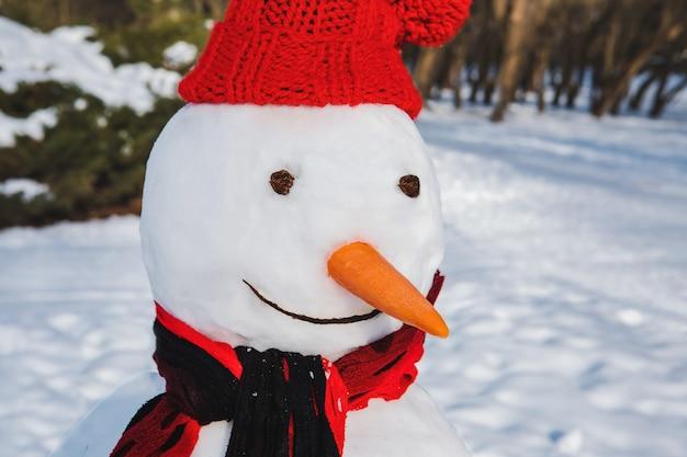 Bonhomme de neige isolé dans la saison d'hiver du chapeau rouge