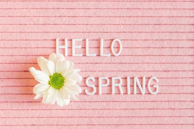 Bonjour printemps sur sanglier lettre feutre rose avec fleur blanche de chrysanthème.