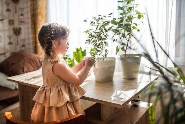 Bonne petite fille mignonne prend soin des plantes d'intérieur. fille arrosant et pulvérisant des plantes d'intérieur à la maison