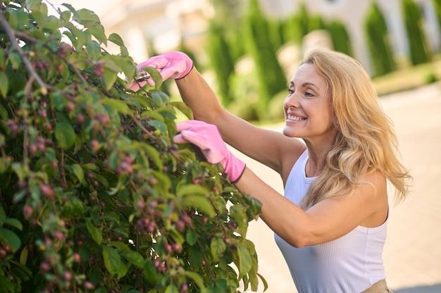 Bons moments. femme joyeuse brillante aux longs cheveux blonds en débardeur blanc avec des cisailles de jardin tendant l'arbre dans son jardin