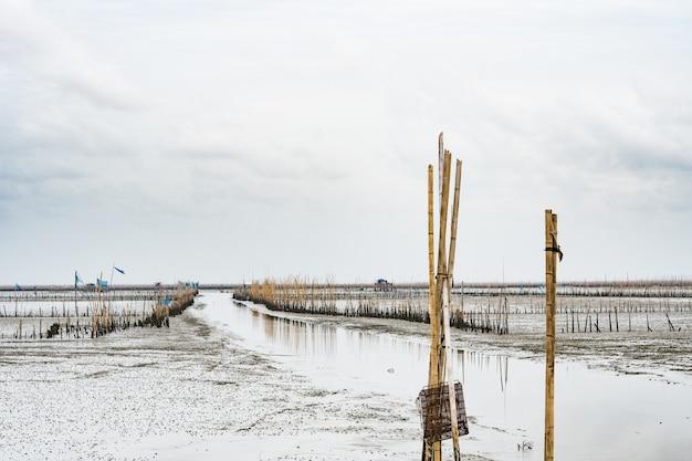 Bord de mer avec faible niveau d'eau, ferme de coquillages avec du bambou séché et de l'argile
