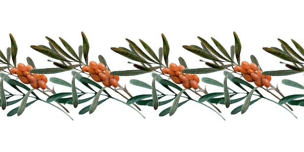 Bordure aquarelle avec des baies, des brindilles et des feuilles d'argousier