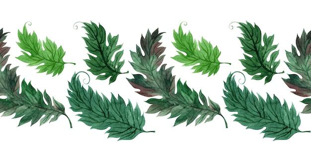 Bordure aquarelle à feuilles vertes stylisées
