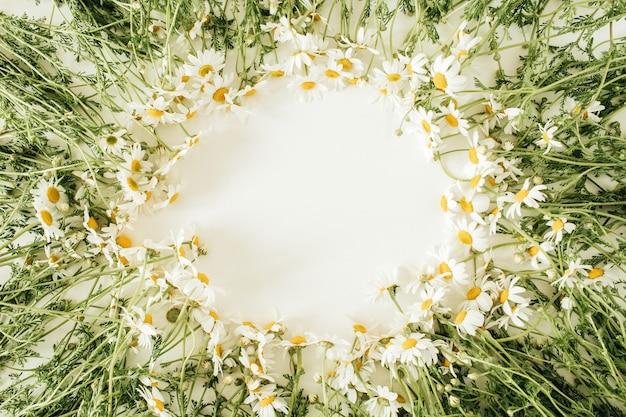 Bordure de cadre rond faite de fleurs de marguerite de camomille sur blanc