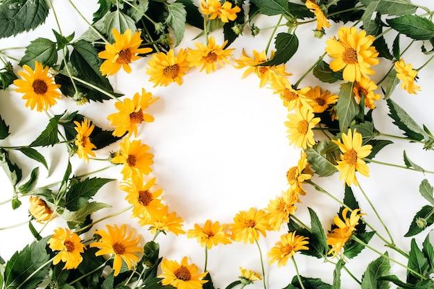 Bordure de cadre rond de fleurs de marguerite jaune sur une surface blanche