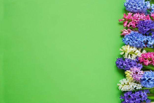 Bordure de fleurs de jacinthe sur l'espace de copie de la vue de dessus de fond vert