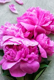 Bordure de fleurs de pivoine rose fraîche avec espace de copie sur une surface de béton gris, pose à plat