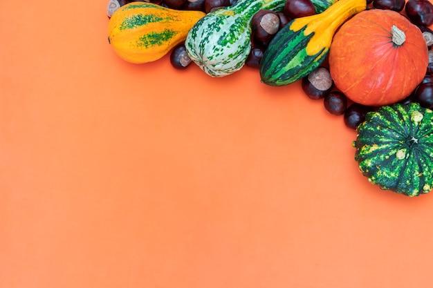 Bordure latérale d'automne de diverses citrouilles et châtaignes décoratives sur fond orange