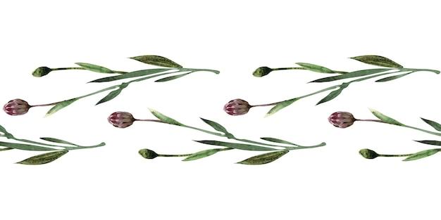 Bordure transparente aquarelle avec des brindilles, des feuilles, des bourgeons et des fleurs de la plante de bleuet