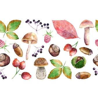 Bordure transparente aquarelle avec récolte d'automne.
