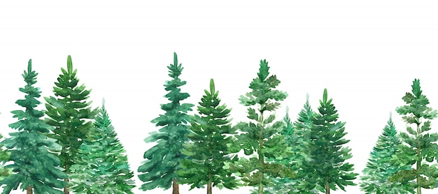 Bordure transparente des arbres de noël vert aquarelle.
