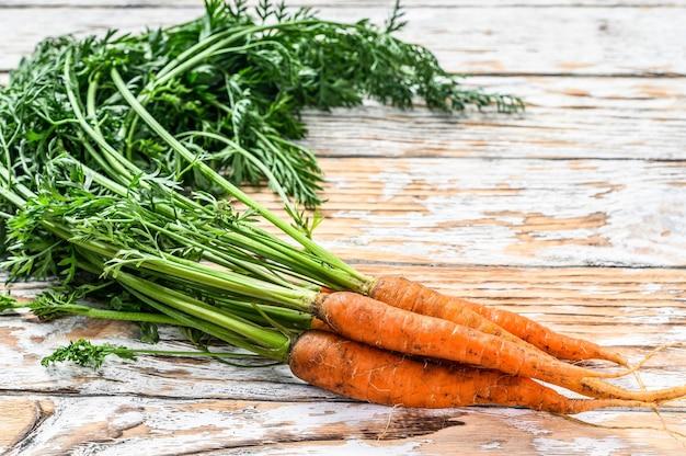 Botte de carottes fraîches aux feuilles vertes