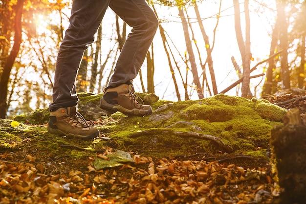 Bottes de randonneurs sur sentier forestier automne randonnée chaussures de trekking sur fond de feuilles et d'arbres