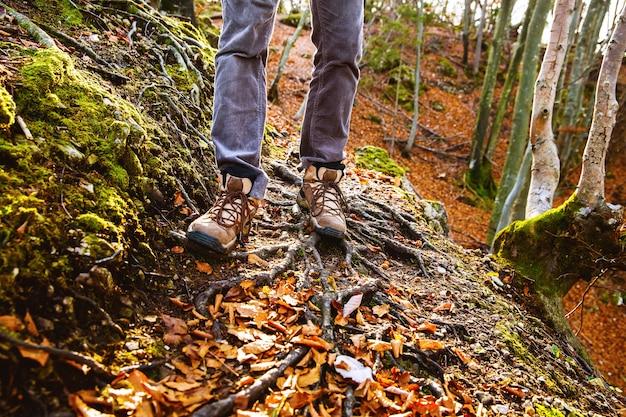 Bottes de randonneurs sur sentier forestier. randonnée d'automne. gros plan sur un homme marchant dans des chaussures de randonnée sur fond de feuilles et d'arbres. voyage, sport, concept de mode de vie.