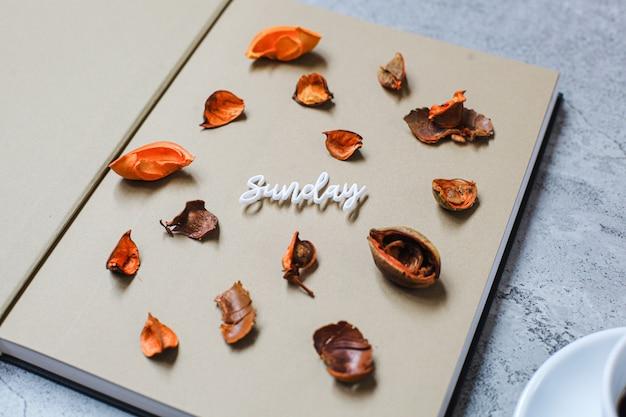 Bouchent le concept créatif d'automne minimaliste à plat du dimanche