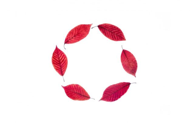 Bouchent les feuilles rouges dorées. la forme d'un cercle.