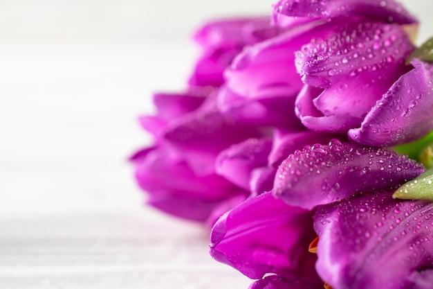 Bouchent macro beau bouquet de tulipes pourpres fraîches