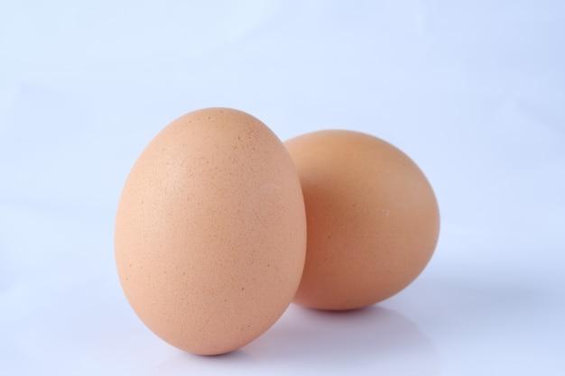 Bouchent les œufs bruns