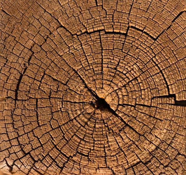 Bouchent la surface texturée en bois